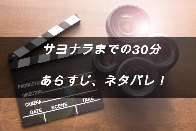 映画サヨナラまでの30分 あらすじネタバレ