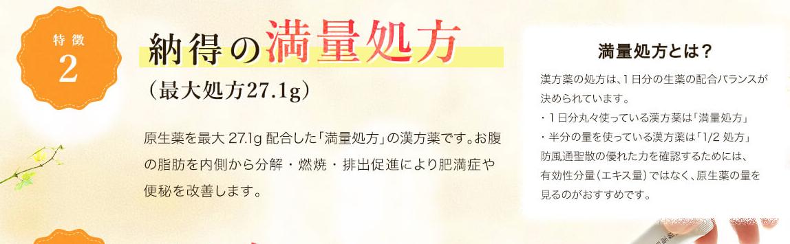 生漢煎 防風通聖散 販売店